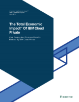IBM Cloud Private: ROI Case Study